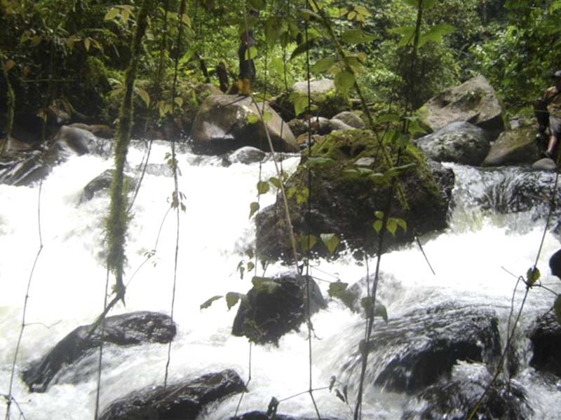 Río Chiguaza